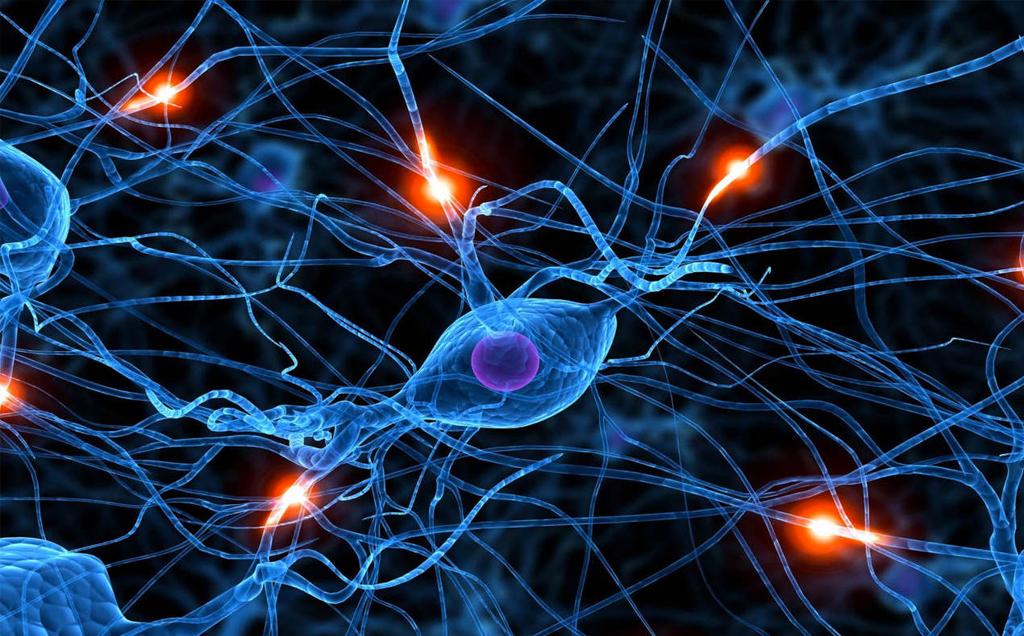 rehabilitacion-neurologica